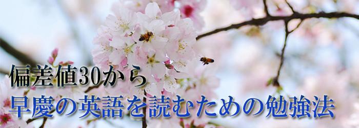 偏差値30から早慶の英語を読むための勉強法